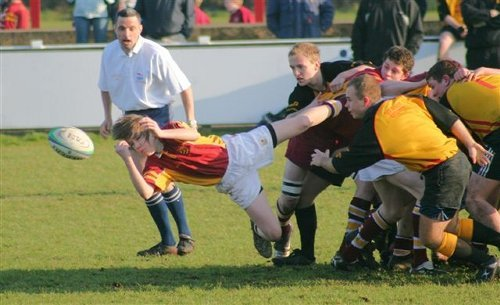 Sedgley vs Fylde